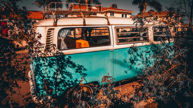 1920x1080 wallpapers: bus, branches, trip, palm (image)