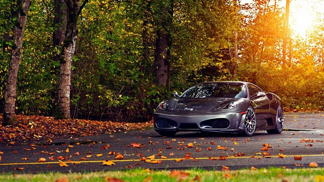 1920x1080 wallpapers: trees, leaves, ferrari, ferrari f430 scuderia, perfect (image)