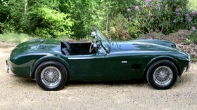 ac, cobra, green, side view, retro, nature, car - wallpapers, picture