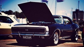 american cars, muscle, stylish, auto - wallpapers, picture