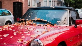 auto, red, side view, autumn, foliage - wallpapers, picture