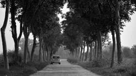 car, trees, bw, road - wallpapers, picture