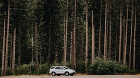 car, trees, side view - wallpapers, picture