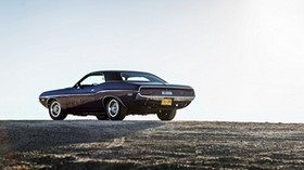 dodge, challenger, side view - wallpapers, picture