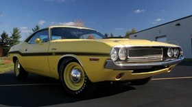 dodge, challenger, side view, yellow - wallpapers, picture