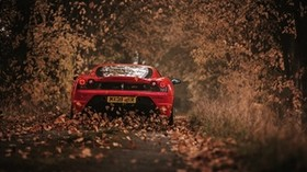 ferrari, scuderia, racing, red, rear view, autumn - wallpapers, picture