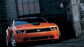 ford, mustang, car, front view - wallpapers, picture