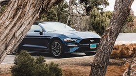 ford mustang, ford, car, convertible, blue, trees, branches - wallpapers, picture