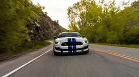 ford mustang gt350, ford, car, sports car, road, speed - wallpapers, picture