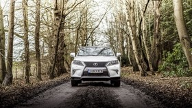 lexus, rx 450h, f-sport, uk-spec, white, front view - wallpapers, picture