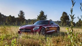 mercedes, amg, side view, grass - wallpapers, picture