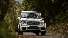 mercedes-benz g-class, mercedes gelandewagen, mercedes, off-road vehicle, gray, front view - wallpapers, picture
