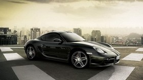 porsche, carrera, gt, car - wallpapers, picture