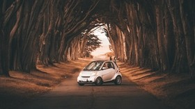 smart fortwo, car, road, trees - wallpapers, picture
