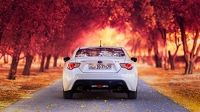 subaru, rear view, autumn, car - wallpapers, picture
